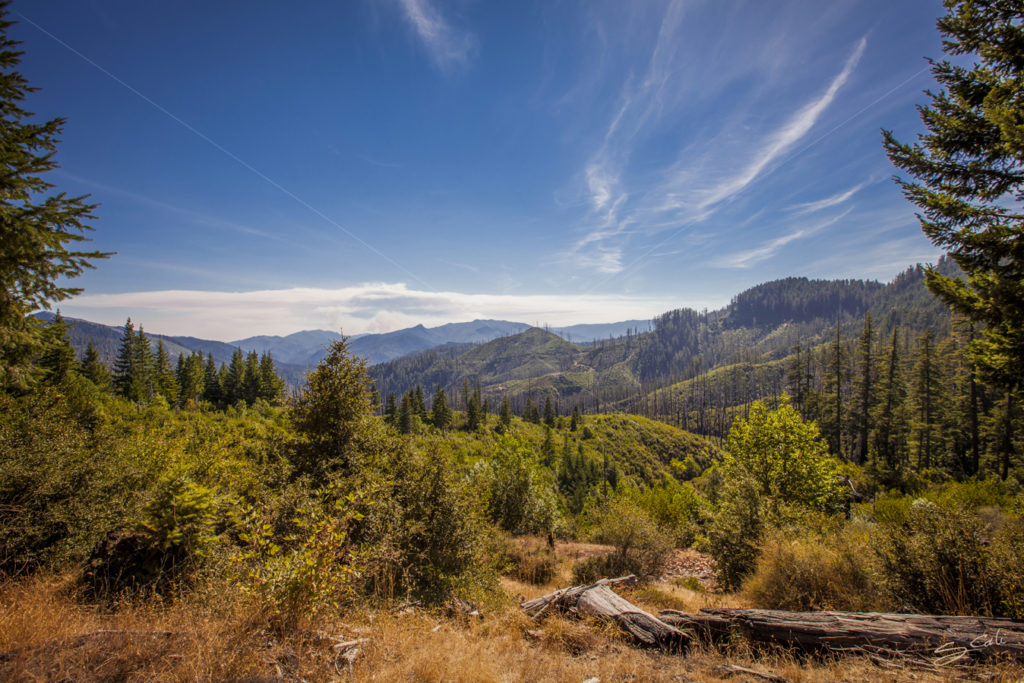 Gold_Beach_Agnus_Oregon_Roadtrip_Eclipse_Landscape-1688_Low_Res_Proof